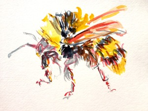 Studying Bumble Bees Today Ive Posted Oil Sketches Here