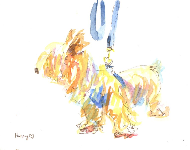 harry the dog watercolor