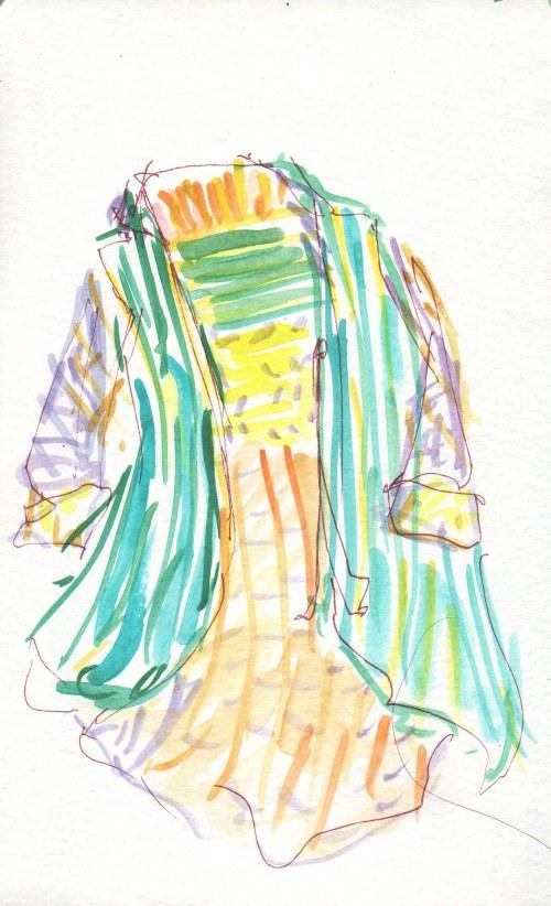 sari coat