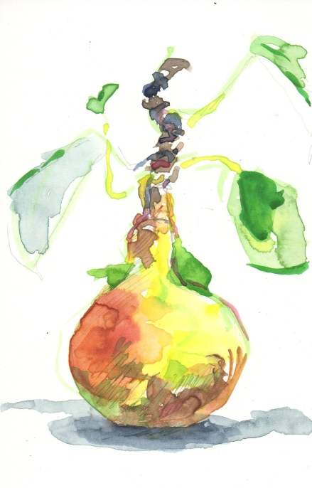 pear watercolor sketch