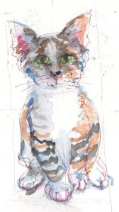 cat sketch tutorial watercolor