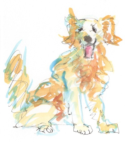 golden retriever watercolor sketch