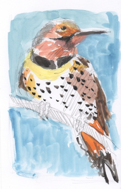 flicker watercolor