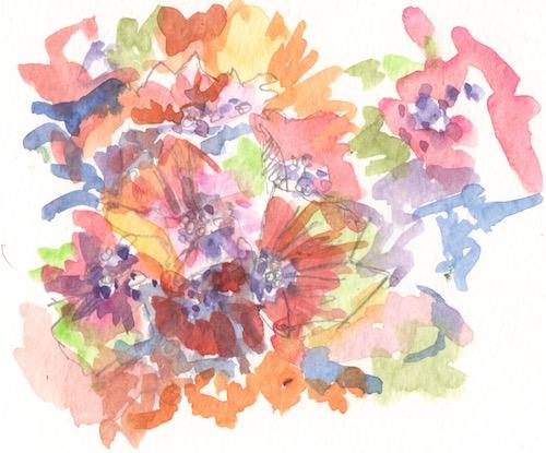 hydrangea variety
