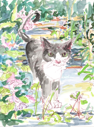 watercolor cat on garden steps